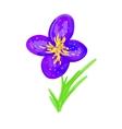 Violet flower vector image vector image