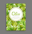 with green olives and leaf isolation vector image
