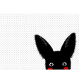 Black Rabbit Dots Background vector image vector image