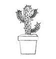 blurred silhouette cactus of three branches in pot vector image vector image