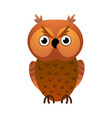 cute old and wild owl bird very concetrated vector image vector image
