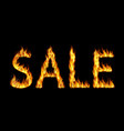 sale word in flames lettering colorful realistic vector image