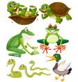 set of green animals vector image