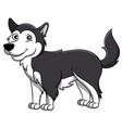 alaskan malamute cartoon dog vector image
