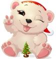 beautiful white bear vector image vector image