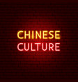chinese culture neon text vector image vector image