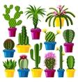 Cute cartoon cactus collection vector image vector image