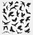 figures of flying birds in grunge style vector image vector image