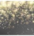 Gold glitter on transparent background EPS 10 vector image vector image