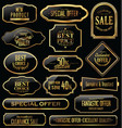 metal plates premium quality gold and black vector image vector image