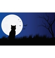 Silhouette of cat with full moon Hallowen scenery vector image