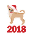 chihuahua in santa claus hat vector image