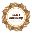 doodle sketch brewery vintage round banner vector image vector image