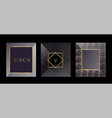 modern cards packaging templates for luxury vector image