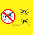 set aedes aegypti mosquito isolated vector image