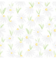 watercolor white daisy seamless pattern eps10 vector image vector image