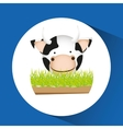 animals farm design vector image