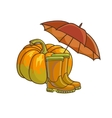 Autumn or fall concept with rain boots vector image vector image