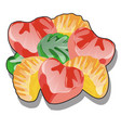 bunch molded marmalade with a glossy surface vector image