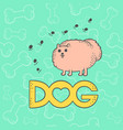 cute dog spitz funny flat caricature vector image vector image