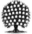 family tree portraits vector image