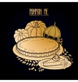 Graphic pumpkin pie vector image vector image