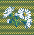 Hand drawn Chamomile flower vector image vector image