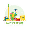 house cleaning service and household supplies vector image vector image