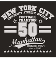 Manhattan t-shirt graphics vector image vector image