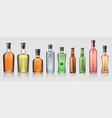 realistic alcohol bottles transparent glass vector image