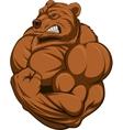 Strong bear vector image vector image