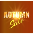Autumn sale background with yellow maple leaves vector image vector image