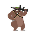 bear soldiers grizzly military wild animal with vector image vector image