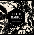black marble background with banner vector image vector image