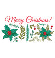 christmas plants template vector image vector image
