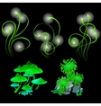 Fantastic glowing mushrooms and polyps vector image vector image