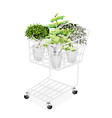 Green Trees and Plants in Shopping Cart vector image vector image