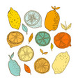 lemons doodle of fruits objects vector image