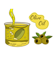 Olive oil hand drawn vector image vector image