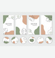 organic stories templates and highlight vector image
