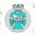 retro hipster animal dog dressed in pullover vector image vector image