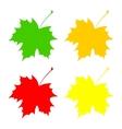 Set maple leaf vector image vector image