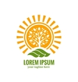 Sun tree logo template vector image vector image
