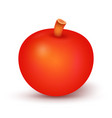apple fruit cartoon on white background vector image