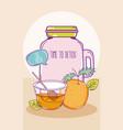 detox juice mason jar vector image