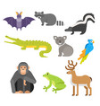 flat style set of animals crocodile raccoon monkey vector image vector image
