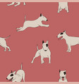 seamless pattern with bull terrier dog vector image