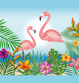 tropical and exotic garden with flemish vector image
