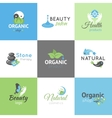 Beauty Design Logos vector image