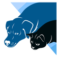cat and dog silhouettes corner vector image vector image